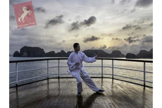 Emeraude-Cruise-Activities-Taichi1