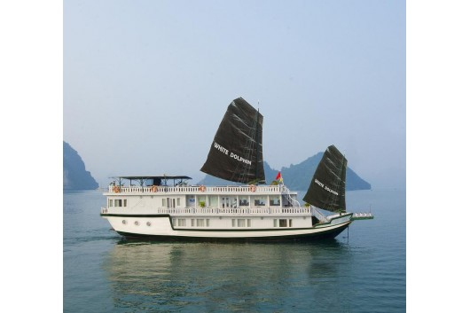 White Dolphin Cruise | Asia Legend Travel