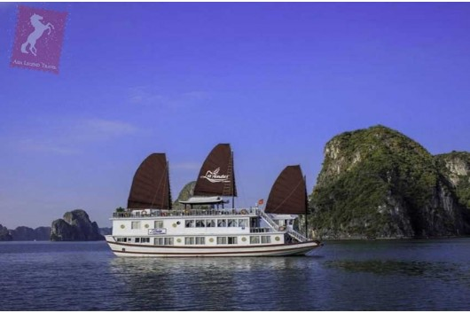 Lavender-Cruise-Halong-Bay-1